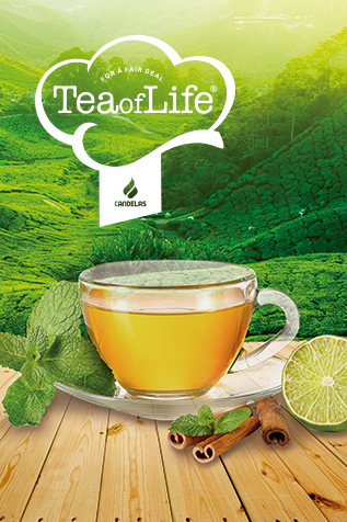 Home Tea of Life